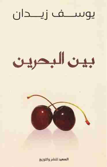 كتاب بين البحرين لـ يوسف زيدان